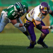Dragons vs. Vikings — Photo