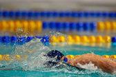 Simning championship 2009 — Stockfoto
