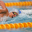 Swimming Championship 2009 - Stok fotoraf