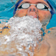 Swimming Championship 2009 — Stock Photo