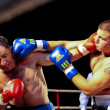 Charity Boxing 2009 - Stockfoto