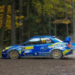 Waldviertel Rallye 2009 - Stock Photo