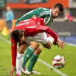 SK Rapid vs. Hapoel Tel Aviv — Stock Photo #9070380