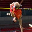 Vienna Indoor Classic 2010 - Foto Stock