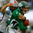 Dragons vs. Raiders - Lizenzfreies Foto