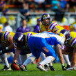 Vikings vs. Giants - Lizenzfreies Foto