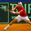 Stock Photo: Tennis Davis Cup Austrivs. France