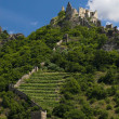 A view of castle Duernstein - Lizenzfreies Foto