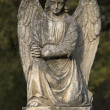 Stone angel - Stockfoto