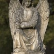 Stone angel - Stock Photo