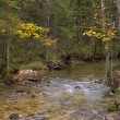 Small stream - Foto Stock