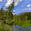 Small lake in the mountains - Foto de Stock