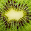 Extreme macro shot of a kiwi - Stock Photo