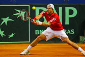 Tennis Davis Cup Austria vs. France — Stock Photo