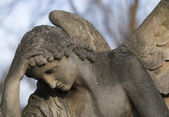 Stone angel — Stockfoto