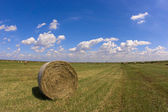 Haystack — Stock Photo