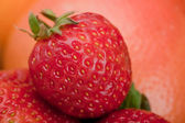 Macro shot of a strawberry — Stock Photo