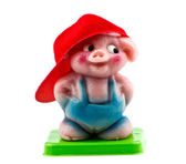 Pig,isolated — Stock Photo