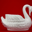 White swan on a red background — Stock Photo
