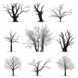 Collection of trees silhouettes — Stock Vector #9133729