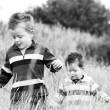 Two brothers enjoying the english countryside — Stock Photo #9414864