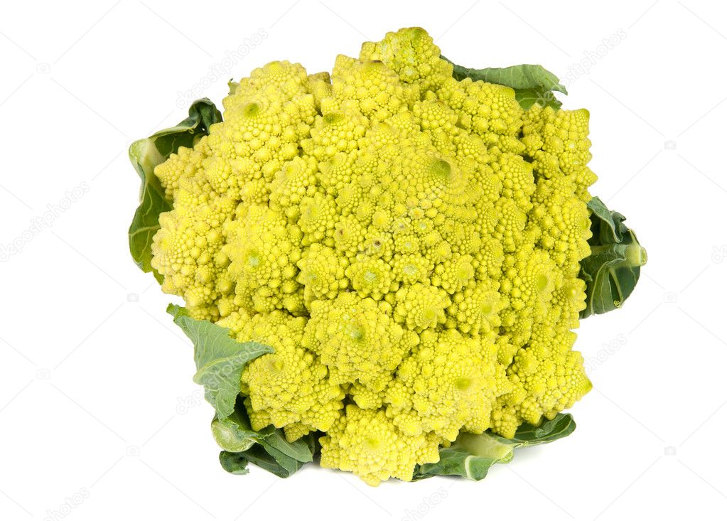 Romanesco broccoli cabbage  isolated on white background — Stock Photo #9605476