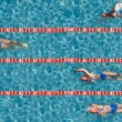 Swimming competition with one champion. — Stock Photo
