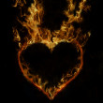 Fire heart — Stock Vector #9021426