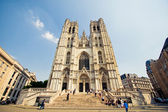 Cathedral in Brussels — Stock Photo