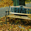 Old wooden bench in the autumn park — Stock Photo