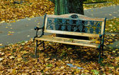 Old wooden bench in the autumn park — Foto Stock