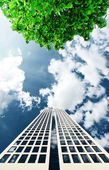 Office building and tree — Stock Photo