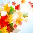 Vibrant Autumn Maple Leaf Background - Stock Vector