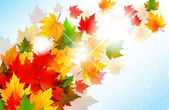 Vibrant Autumn Maple Leaf Background — Stock Vector
