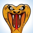 Scary Cobra Head — Stock Vector