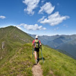 Trekking in the Alps - Stock Photo