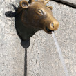 Bull fountain — Stock Photo