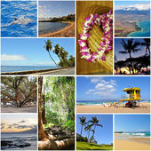Hawaii travel collage — Stock Photo