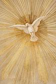 Dove of Peace — Stock Photo