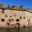 Fort Pulaski — Stock Photo #10477689