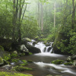 Smoky Mountains - Stock Photo