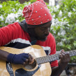 Stock Photo: Street Musician