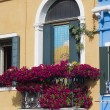 Burano Venice Italy - Stock Photo