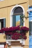 Burano Venice Italy — Stock Photo