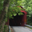 Stonelick / Perintown Covered Bridge - Stock Photo