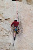 男岩登り — ストック写真