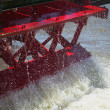 Paddle Wheel - Stock Photo