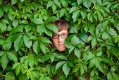 Gezicht onder ivy. — Stockfoto