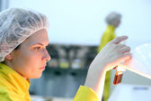 Lab Technician - Quality Control — Stock Photo