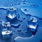 ������, ������: Ice cubes